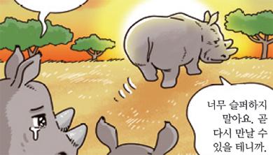 [가상인터뷰] 멸종을 눈앞에 둔 북부 흰코뿔소