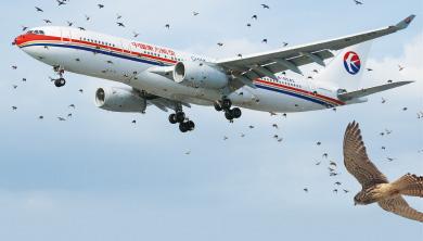 Part 3. 하늘을 가르는 거대한 비행기의 위협