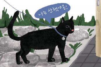 [Culture] 고양이가 자꾸 밖에 나가요