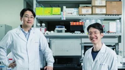[Career] DGIST 뉴바이올로지전공 -암세포 하나씩 분석 생물정보학의 메카