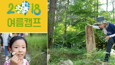 [2018 여름캠프] 어서 와~ 국립백두대간수목원은 처음이지?