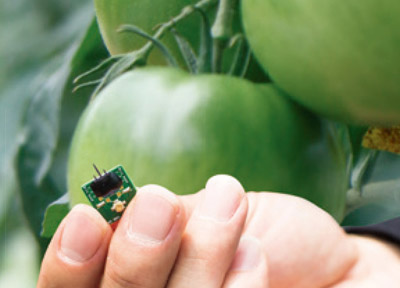 Part 3. 정밀농업, 과학자, 식물과 통(通)하다