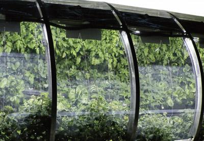 Part 4. 극한 농업, 사막에서 성공하면 기후변화도 거뜬!