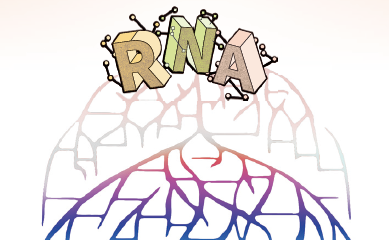 RNA가 지구 최초 생명체 만들었을까?