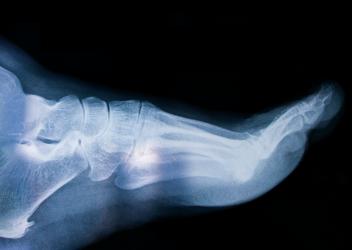 26개 뼈와 33개 관절의 정교한 하모니