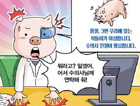 아픈 돼지 고르는 안면 인식 알고리듬