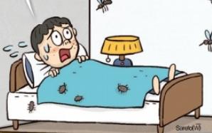 집안 해충 잘 죽지도 않아!