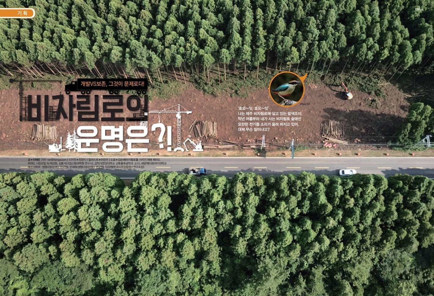 개발VS보존, 비자림로의 운명은?!