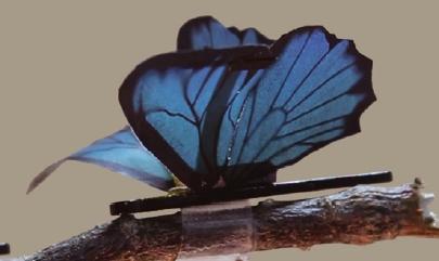 [과학뉴스]나비의 날개처럼 유연한 인공 근육