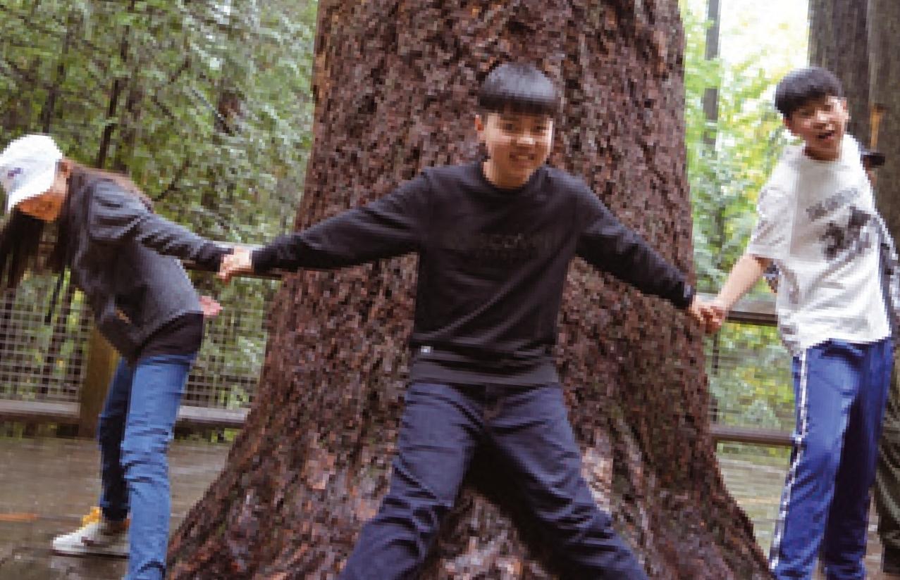 밴쿠버●미션, 거대한 나무 흔들다리를 건너라