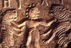 [Go! Go! 고고학자] 닭을 처음 키운 사람은 누구였을까?