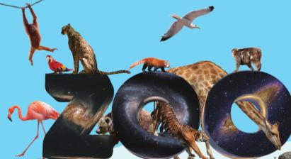 [별헤는수학] 시민의 힘으로 만든 은하 동물원, 갤럭시 주
