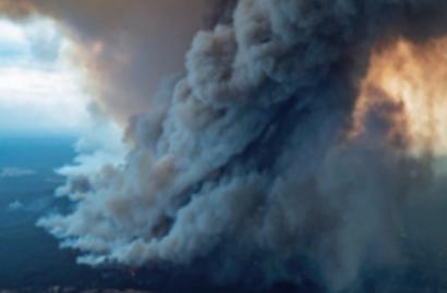 [호주 산불] 범인이 따로 있다?