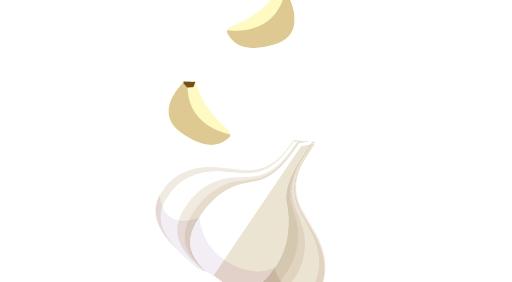 코로나19 팩트체크┃마늘 먹으면 예방 효과 있다?