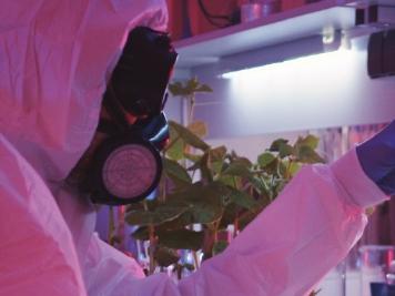 바이러스는 생물학 무기가 될 수 있을까
