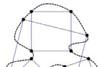 [수학뉴스] 100년 묵은 내접 사각형 문제 영상통화하며 푼 수학자들