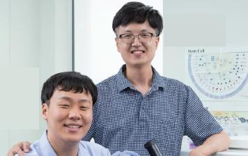 [융복합 파트너 @ DGIST] 줄기세포로 만든 '미니 장기'로, 암 표적 치료법 찾는다