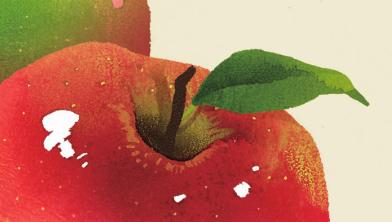 사과, 배, 감... 저마다 색으로 물드는 이유