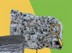 [스쿨리포트 A+ ] 과학시간 야외 관찰, 교내 암석 보물찾기