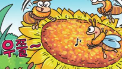 [가상인터뷰] 명탐정 꿀벌은 냄새 훈련을 받았다?!