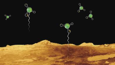 [기획] 외계 행성의 생명체 지표, 포스핀