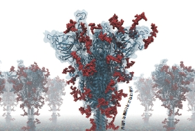 코로나도 물리칠까? 단백질 구조 예측, 이렇게 쓴다!