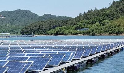 재생에너지 '루키' 수상태양광...물 속 생태계는  괜찮을까