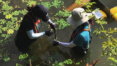 [지사탐 인터뷰] 외래종 거북, 친환경적으로 잡는다! 구교성 연구원