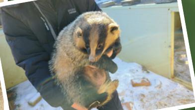 [슬기로운 동물원생활] 청주동물원, 토종동물 보호소를 꿈꾸다