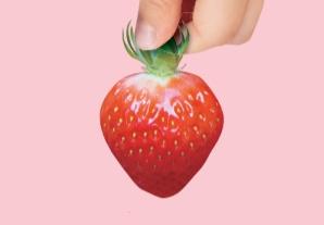 [특집]딸기 독립 만세!