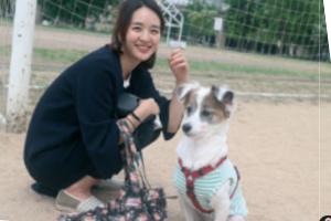[JOB터뷰] 본캐는 변호사! 부캐는 캣맘입니다! 채수지 변호사