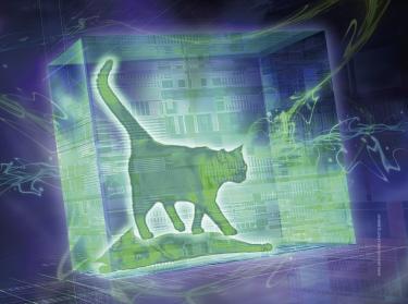 슈뢰딩거 고양이의 생과 사, 확률을 계산하다