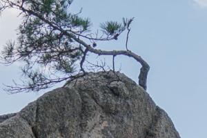 [파고 캐고 지질학자] 아슬아슬 서낭바위를 조각한 주인공은 파도?!